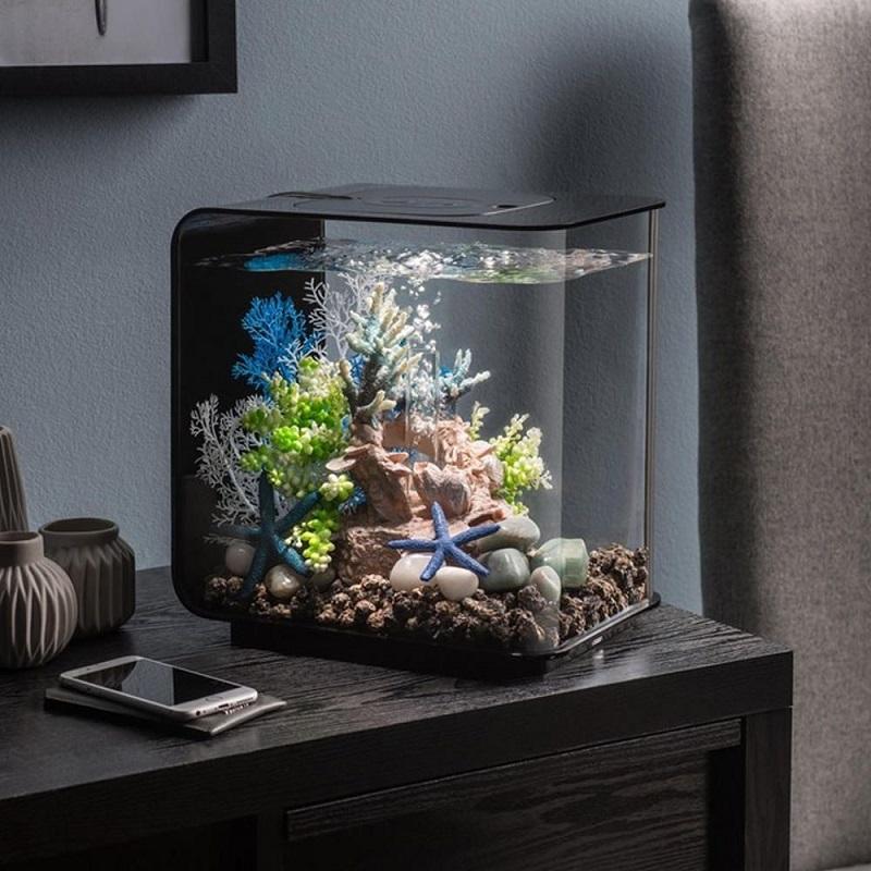 фото оригинальных аквариумов ждут уютные