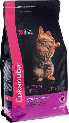 Лучший кошачий корм по мнению ветеринаров