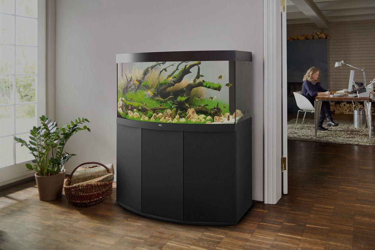 аквариум фото для дома даны