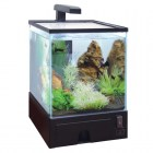 АА-Aquariums Аквариум 1919AA Aqua Box, 5,5л